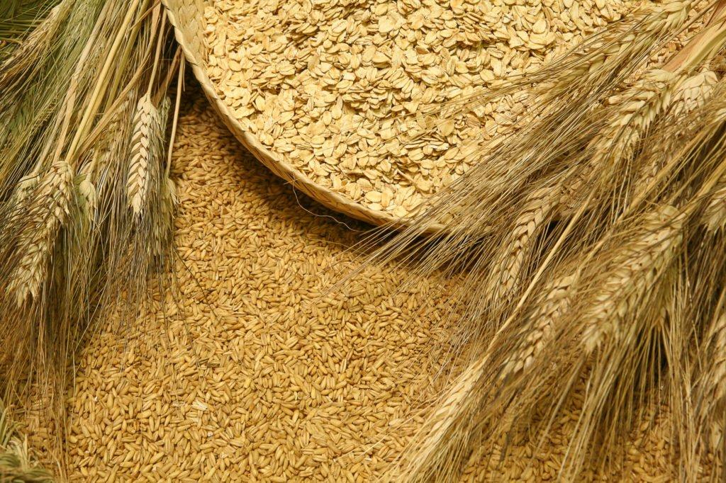 Harina de avena integral harinas la fuensanta harinas convencionales y ecol gicas - Copos de avena bruggen ...