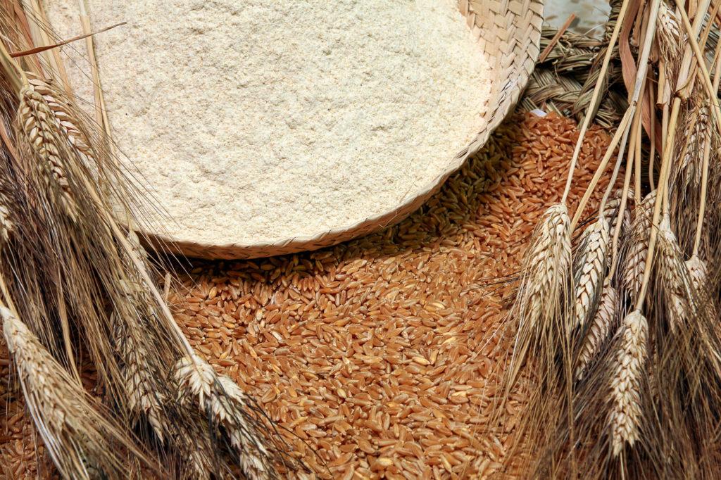 Harina recia harinas la fuensanta harinas convencionales - Harina integral de trigo ...