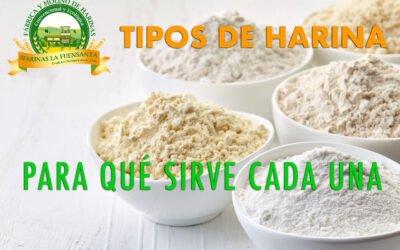Tipos de harina y para qué sirve cada una