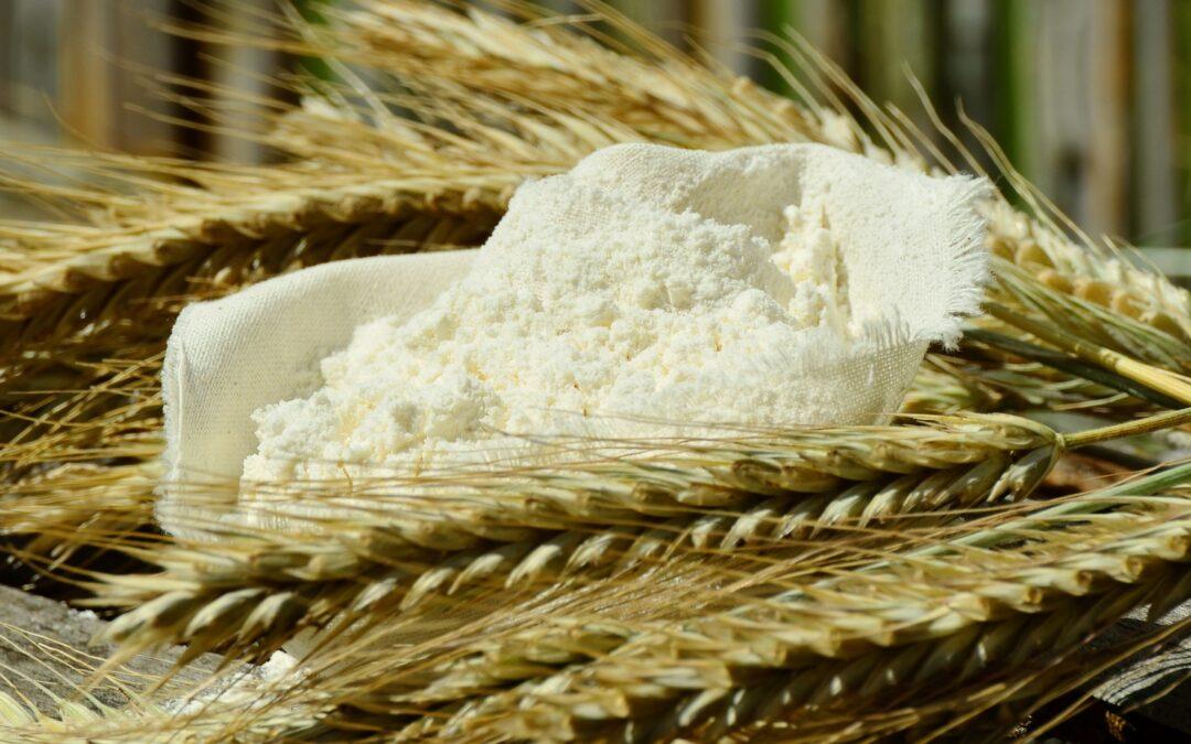 Harinas Ecológicas con y sin gluten