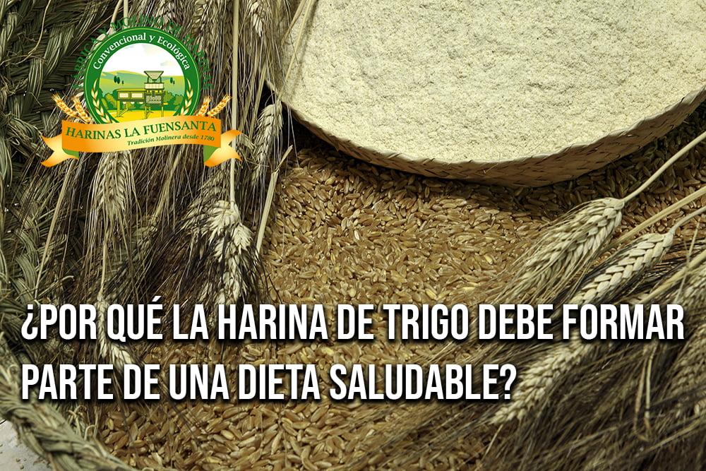 ¿Por qué la harina de trigo debe formar parte de una dieta saludable?