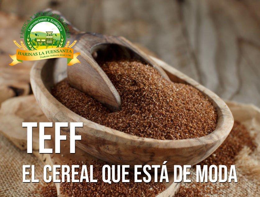 Teff, el cereal que está de moda