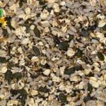 Mix de semillas ecológicas - Harinas la Fuensanta